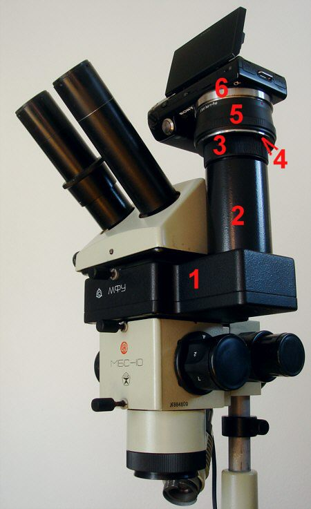 [ the MBS-10 stereo microscope with photographic adapter and a Sony Nex-5 Kamera ]