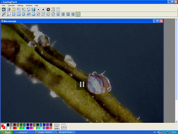 [ USB microscope software ]